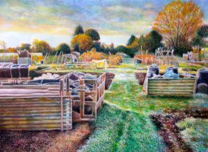 Allotment First Frost coloured pencil and gouache on paper 22″ x 29″ £700
